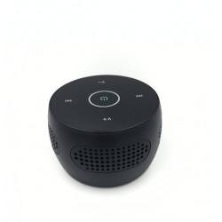 Camera cachée dans une enceinte bluetooth wifi ip p2p Full HD LAWMATE PV-BT10i